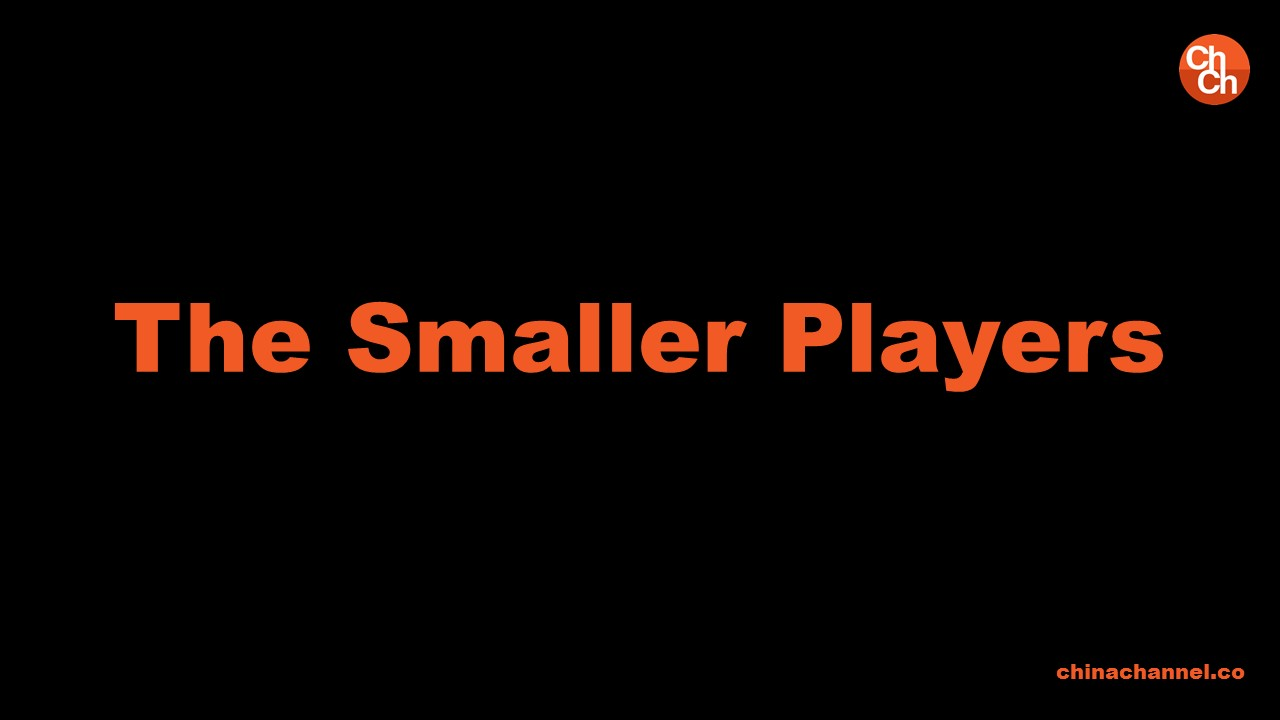 The Smaller Players