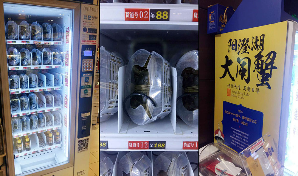 Live Crabs Vending Machine China WeChat Pay