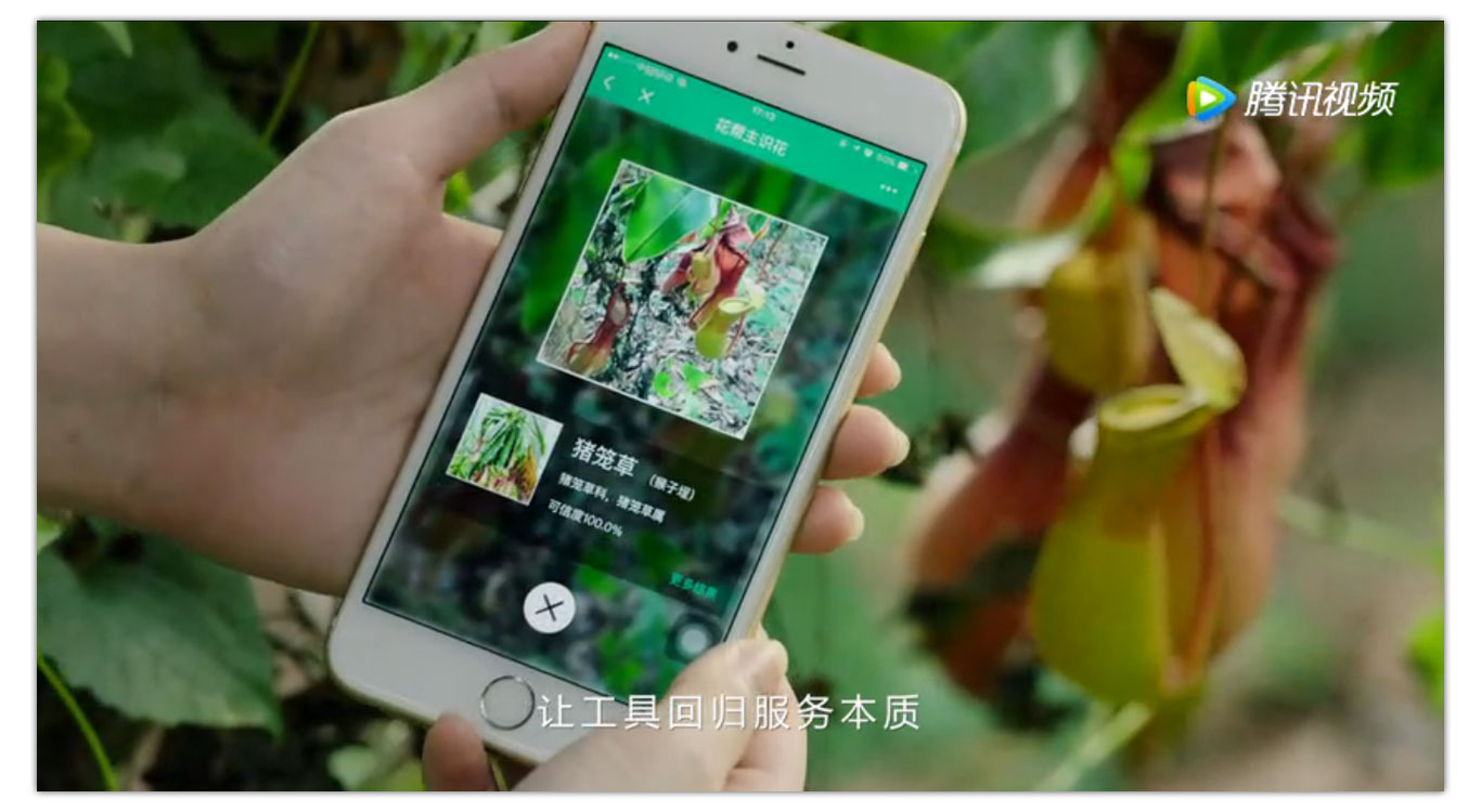 WeChat Mini Program Plant Scanner