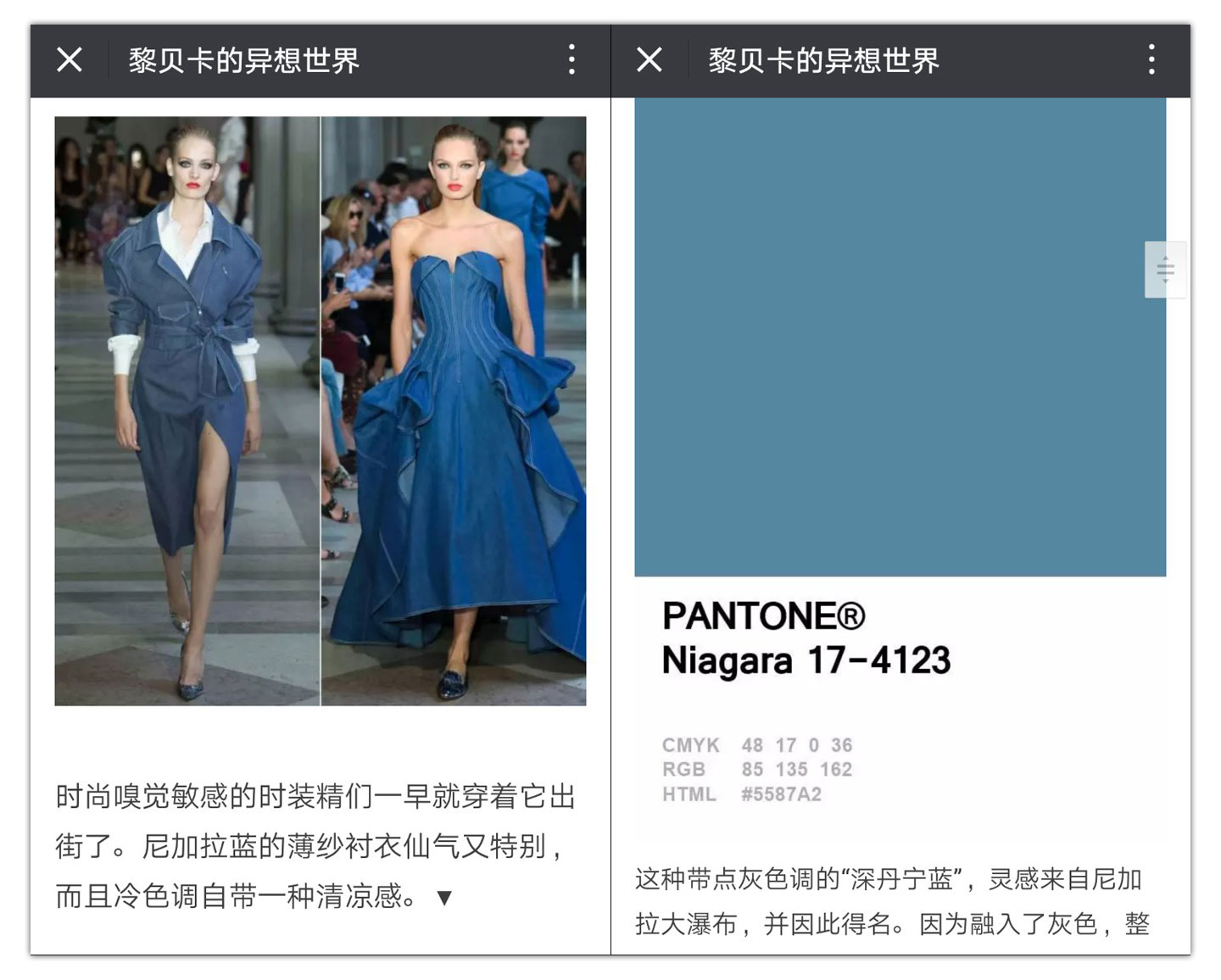 Blue Dresses WeChat Article Becky Li