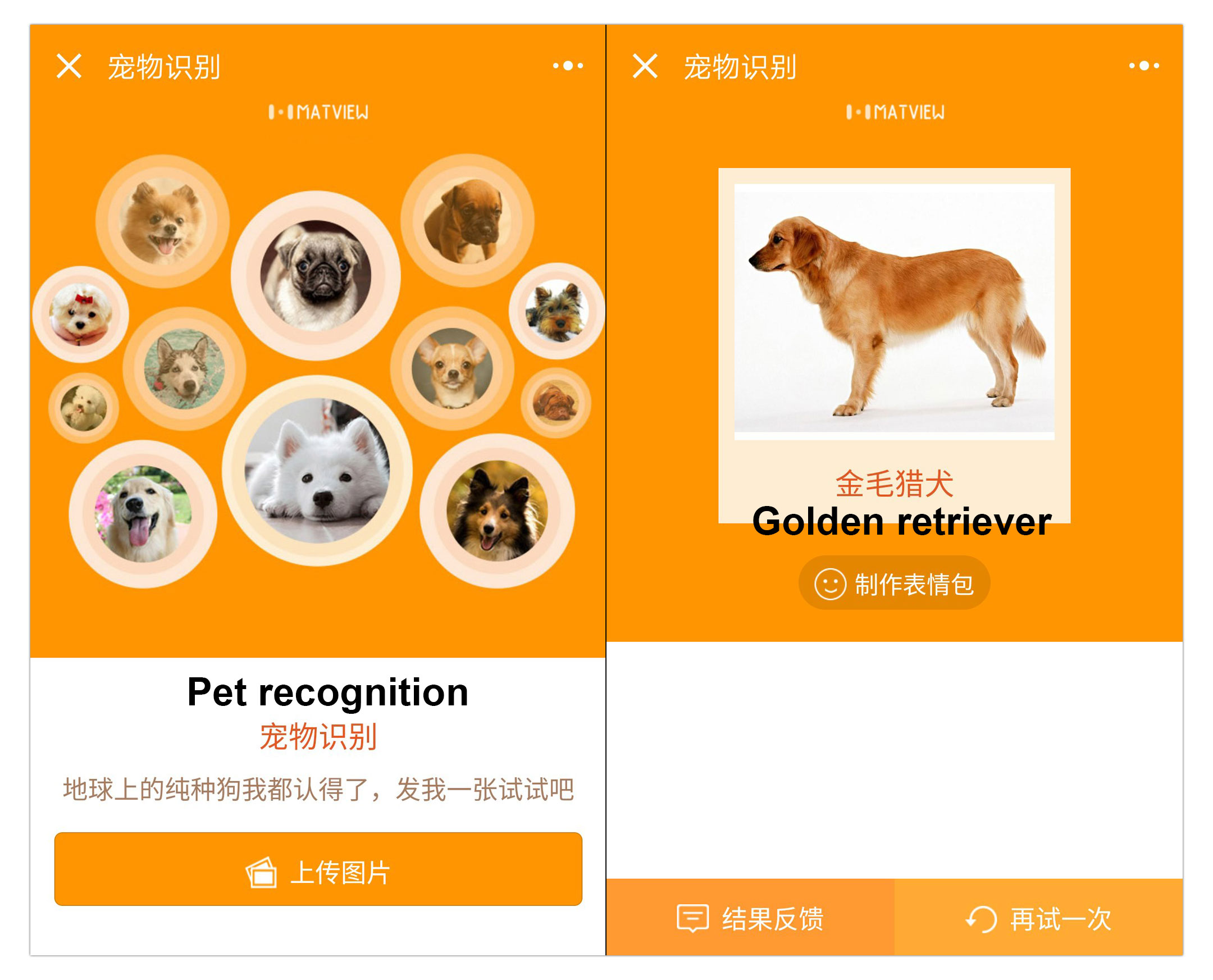 WeChat Dog & Cat Breed Recognition